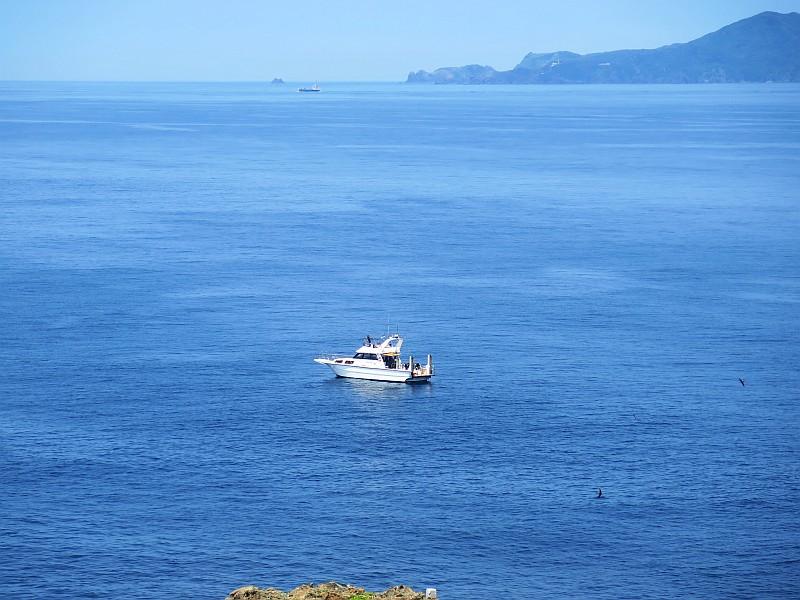明日より神子元島へ出航再開!!