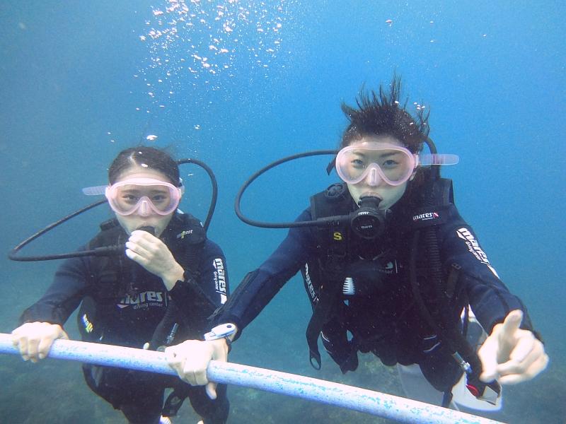 かわいいお魚に会えました!ヒリゾ浜体験ダイビング@アカデミー