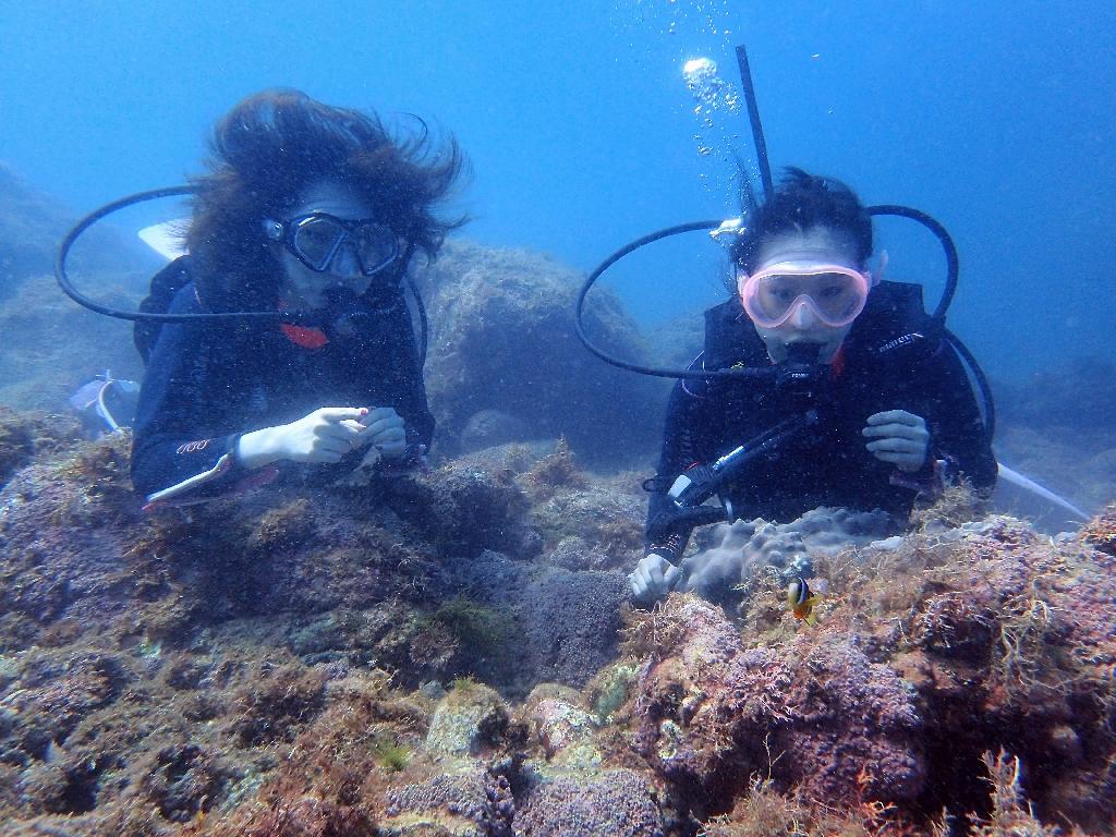 お魚さんいらっしゃーい!ヒリゾ浜体験ダイビング@アカデミー