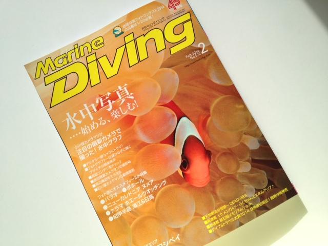 国内ダイビングサービス部門 暫定1位!