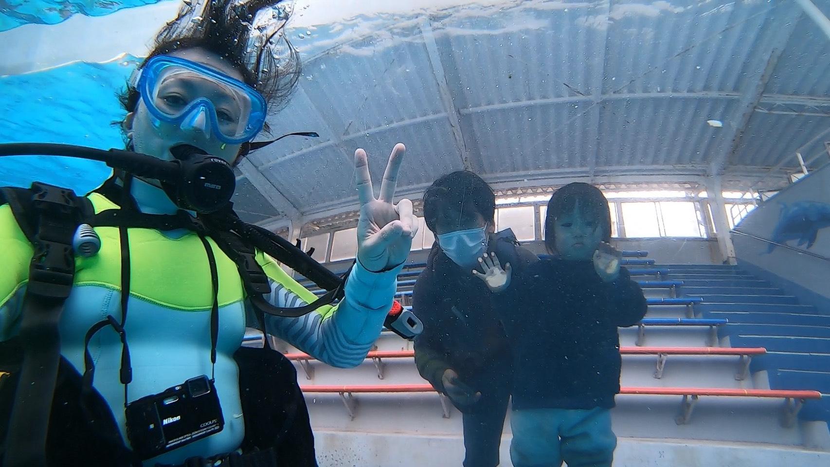 ドルフィンダイビング再開!@下田海中水族館
