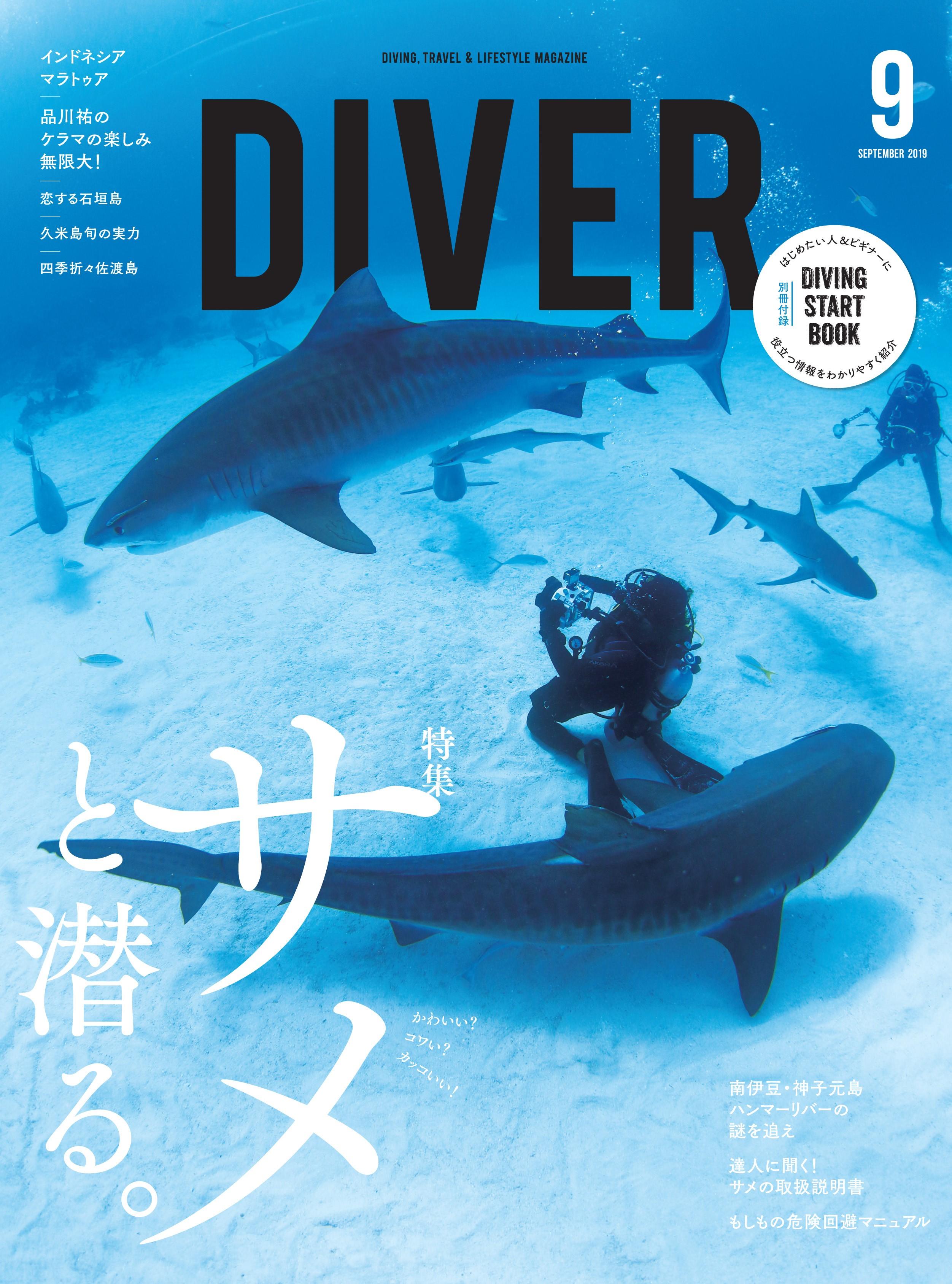 サメ好き集合!9月10日は大人のサメ教室@渋谷東京サロン 森カフェ